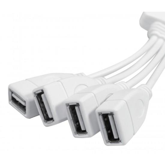 Hub USB2 da 4 Porte Bianco