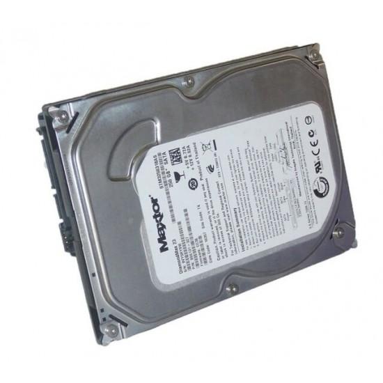Hard Disk Maxtor DiamondMax 23 da 250GB SATA