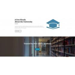 Realizzazione Sito Web Landing Page con responsività avanzata e tema grafico ottimizzato per Scuole Corsi di Formazione Istruzione Apprendimento ecc..