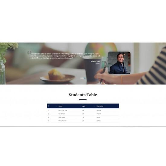 Sito Web Landing Page con responsività avanzata e tema grafico ottimizzato per Scuole Corsi di Formazione Istruzione Apprendimento ecc..