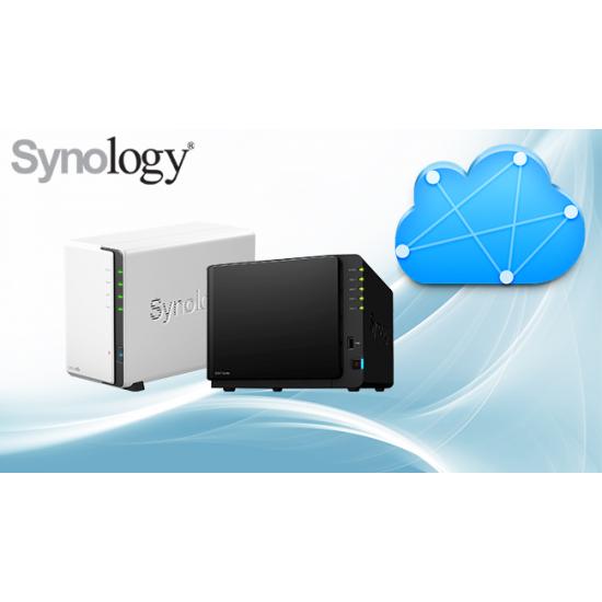 Synology SetUp Service da Remoto (Una Tantum)