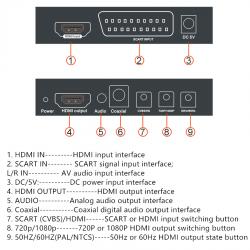 Convertitore Video da RGB SCART analogico a HDMI (Digitale) per lettori DVD Console Gioco compatibile con Amiga