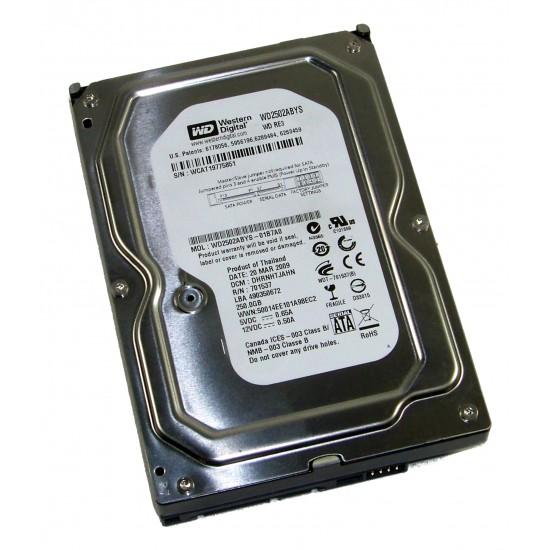 Hard Disk interno Western Digital da 250GB SATA 3 da 3,5 Pollici WD2502ABYS