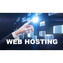 Servizio di Hosting Web Professionale Dedicato Amministrato per Sviluppo e Supporto Partners